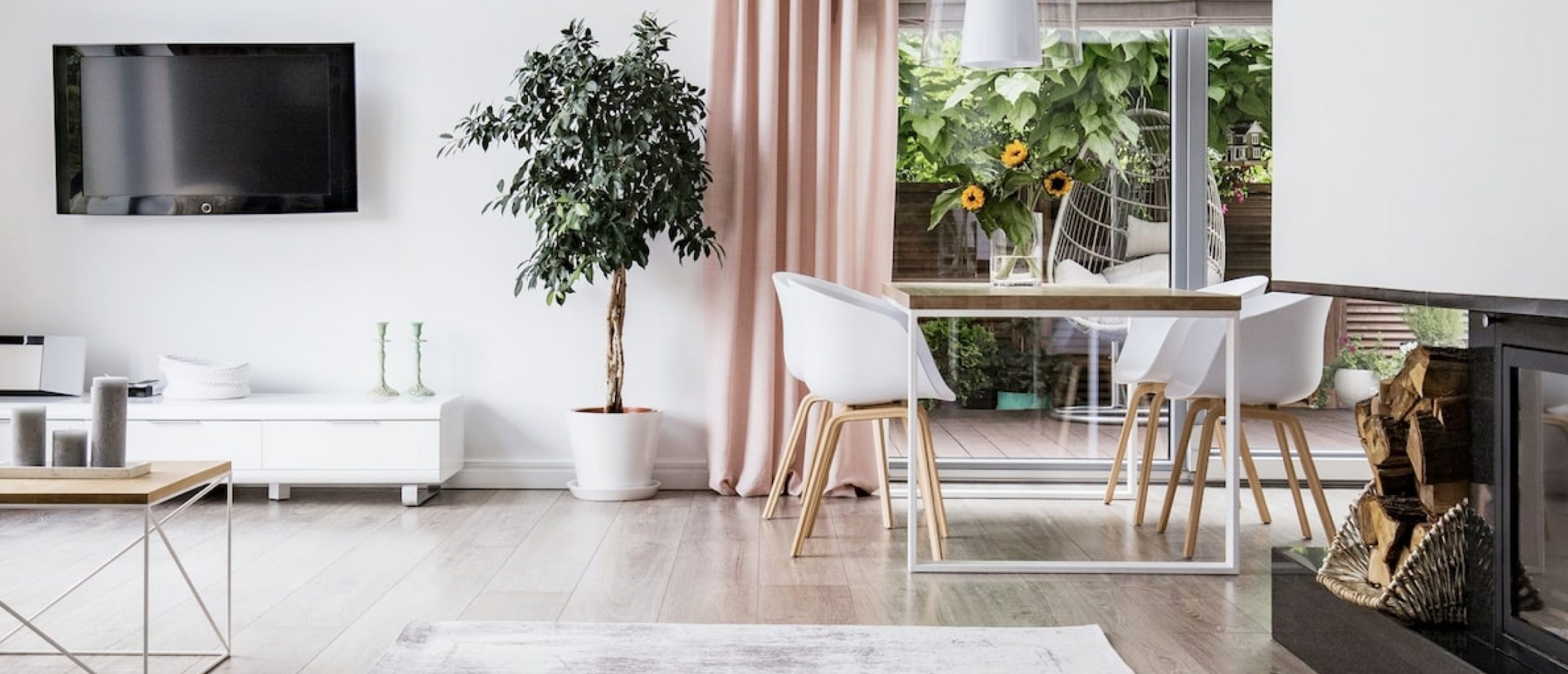 Living room with Plant, Chair and Table
